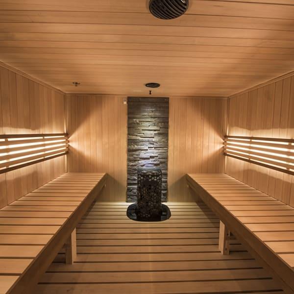 sauna heaters 1