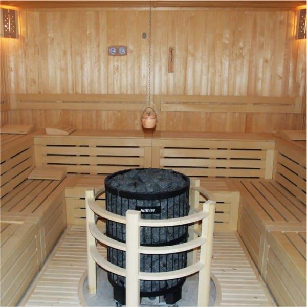 sauna heaters 2